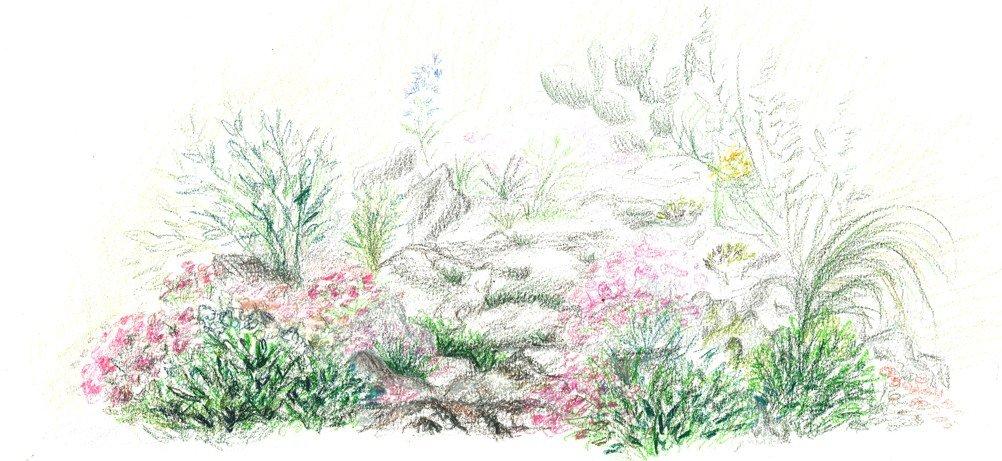 jardinalpinmail.jpg